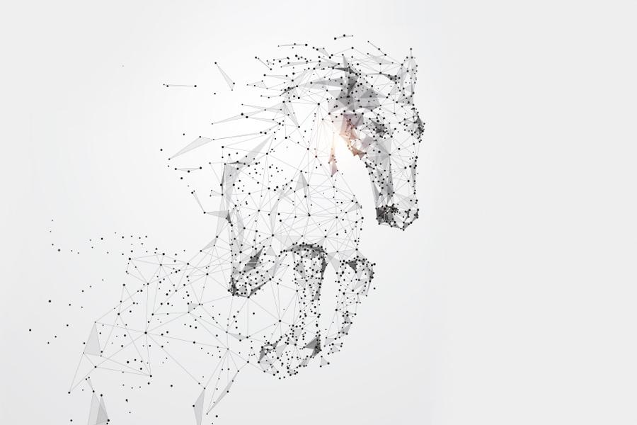 Wir bringen euch aufs digitale Pferd!